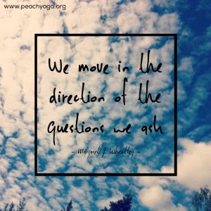 We move in the direction of the questions we ask