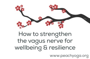How to strenthen the vagus nerve for wellbeing and resilience | Peach Yoga