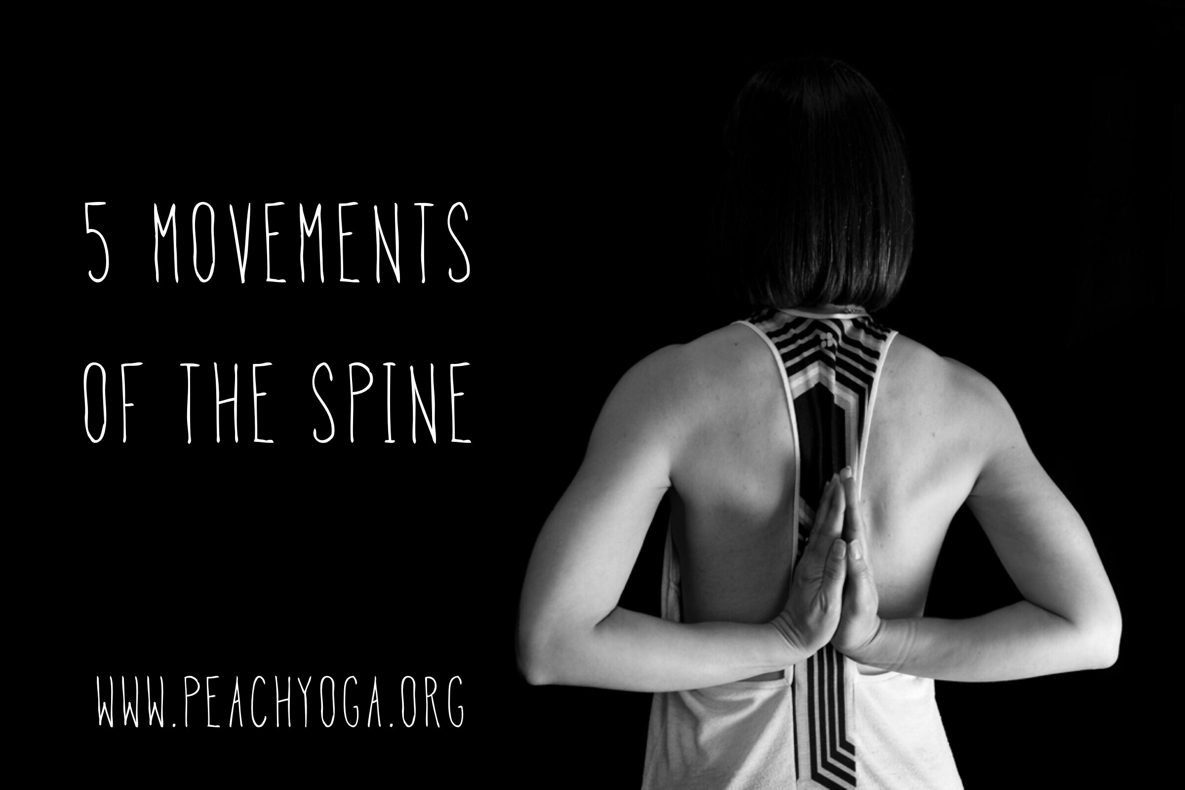 5 Movements of the Spine | Start your home yoga practice | Yoga for back pain | Peach Yoga